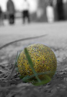 Boccia. Foto: Flickr Associazione Nuova Cerasa